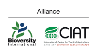 The Alliance Bioversity International - CIAT